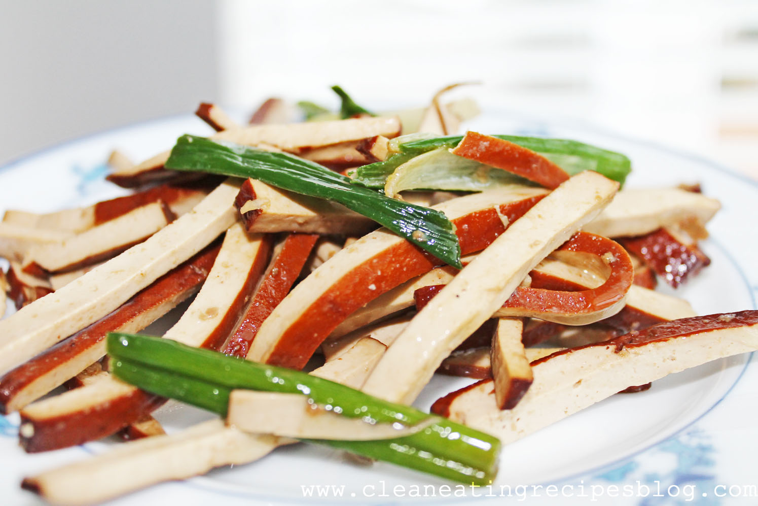 Clean Eating Recipe – Stir Fry Green Onion and Dried Tofu Slices