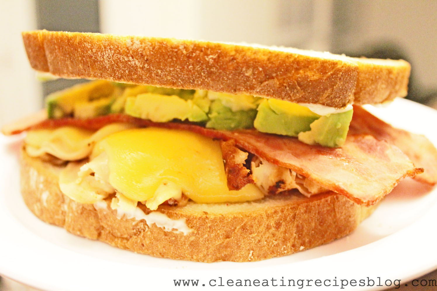 Clean Eating Recipe – Turkey, Avocado and Gouda Sandwich